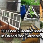 55+ Cool & Creative Ideas In Raised Bed Gardening