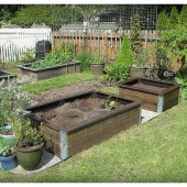 What To Start Planting In March