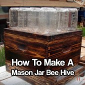 DIY Mason Jar Bee Hive
