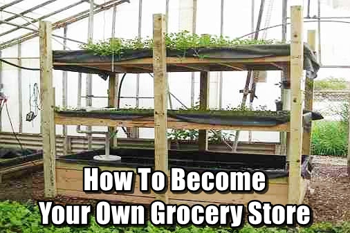 How To Become Your Own Grocery Store