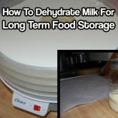How To Dehydrate Milk For Long Term Food Storage