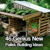 46 Genius New Pallet Building Ideas