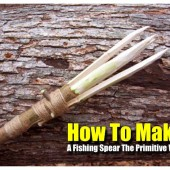 How to Make a Fishing Spear The Primitive Way - Being able to fish if in an emergency situation could save your life, fish can be eaten raw and provides a lot of needed calories. Do you know what part provides the most calories? (hint: it's the eyes and brain... yum!)