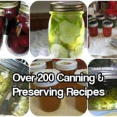 200+ Canning and Preserving Recipes
