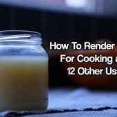 How To Render Tallow for Cooking and 12 Other Uses