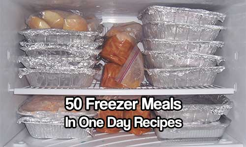 50 Freezer Meals in one Day Recipes - Freezer meals are just so handy to have. They can save you time and actually save you a lot of money on food.