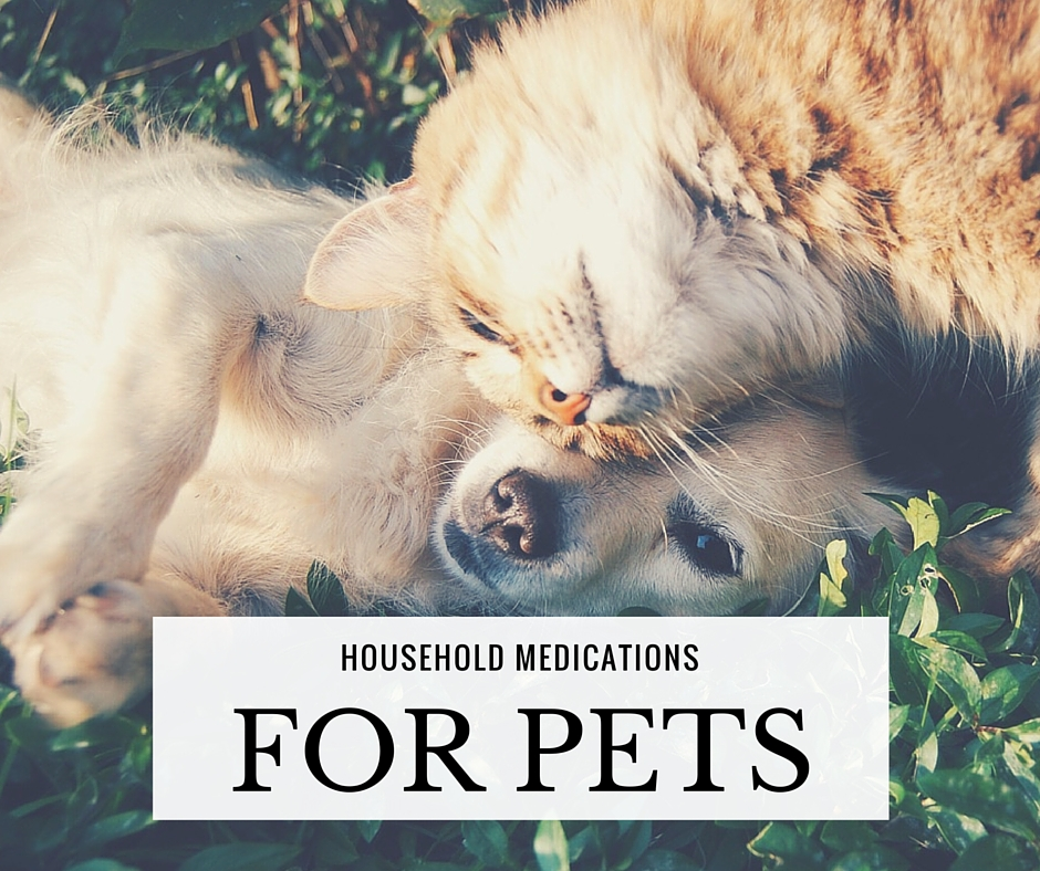 Household Medications For Pets - If SHTF or you are hundreds of miles away from a Vet… this chart of household medications may just help your beloved pet in an emergency.