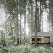 Wooden House In The Middle of The Forest