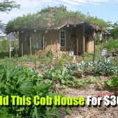 Build This Cob House For $3000 - Cob houses keep the temperature inside more regulated, thus saving valuable energy on cooling and heating. They are a very inexpensive to build, too.