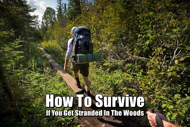 How To Survive If You Get Stranded In The Woods - Knowing the fundamentals of survival like how to make a shelter, find water and make fire could help you in any situation not just getting stranded in the woods.