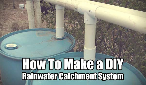 Make a DIY Rainwater Catchment System