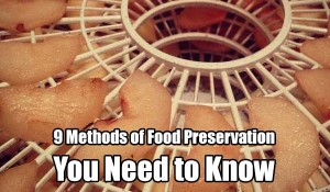 9 Methods of Food Preservation You Need to Know - There are 9 methods of food preservation mentioned, some you may know well and some you may not know so well. All are great ways to preserve your food and all of them WILL help you in a survival situation. Can you add more to the list?