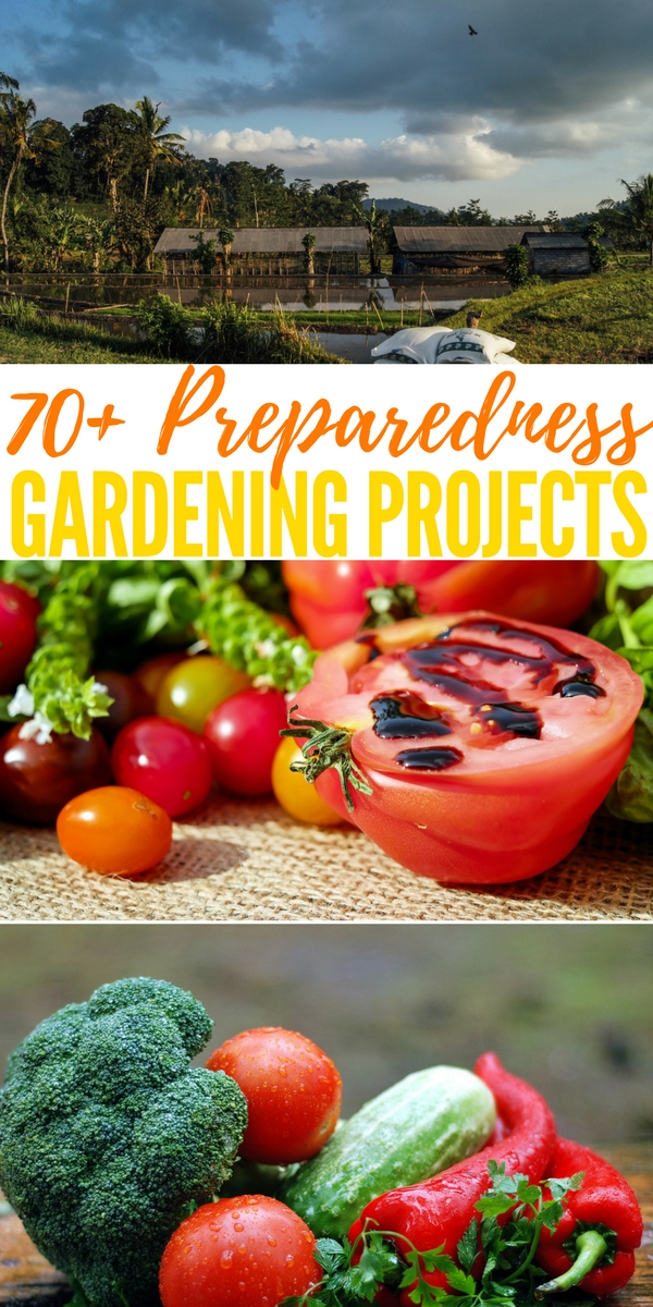 70+ Preparedness Gardening Projects — Gardening has and always will be an important preparedness tool in aiding us towards self sufficiency and survival. With out it we wouldn't last log in a SHTF situation.