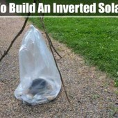 How To Build An Inverted Solar Still - How To Build An Inverted Solar Still http://www.shtfpreparedness.com/build-inverted-solar-still/ An inverted solar still is pretty much the same principles of a normal still but with a normal still you have to dig a deep hole and sometimes that isn't feasible in an urban setting.