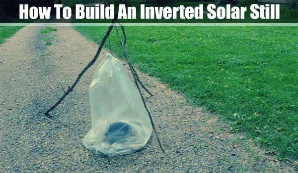How To Build An Inverted Solar Still - How To Build An Inverted Solar Still  https://www.shtfpreparedness.com/build-inverted-solar-still/  An inverted solar still is pretty much the same principles of a normal still but with a normal still you have to dig a deep hole and sometimes that isn't feasible in an urban setting.