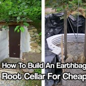How To Build An Earthbag Root Cellar For Cheap - Root cellars can keep your fruit and vegetables good all year round by keeping your food 40 degrees lower than the summer temperature outside and in winter the root cellar will keep the food just above freezing.