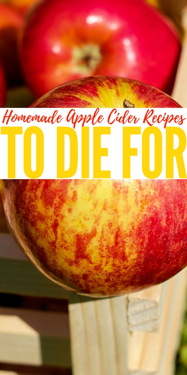 Homemade Apple Cider Recipes To Die For Fall is upon us and I am so thankful it is. I have to say that Fall is my favorite season because of all the wonderful colors, the cool crisp air and of course... Apple cider.