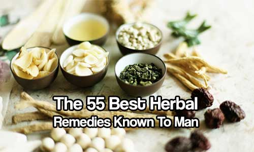 The 55 Best Herbal Remedies Known To Man - While some people may dismiss herbal remedies as quackery, the use of botanicals is well rooted in medical practice. Ancient doctors methodically collected information about herbs and developed well-defined pharmacopoeias to treat a variety of ailments. More than a quarter of all drugs used today contain active ingredients derived from those same ancient plants.