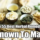 The 55 Best Herbal Remedies Known To Man