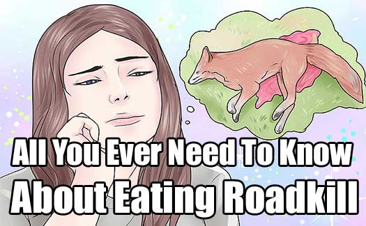 All You Ever Need To Know About Eating Roadkill
