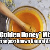 "This ""Golden Honey"" Mixture is The Strongest Known Natural Antibiotic"