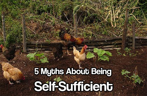 5 Myths About Being Self-Sufficient