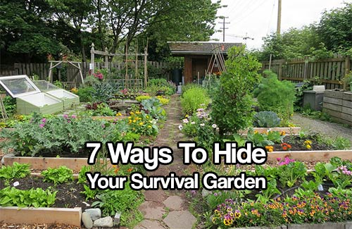 7 ways to hide your survival garden shtf prepping central