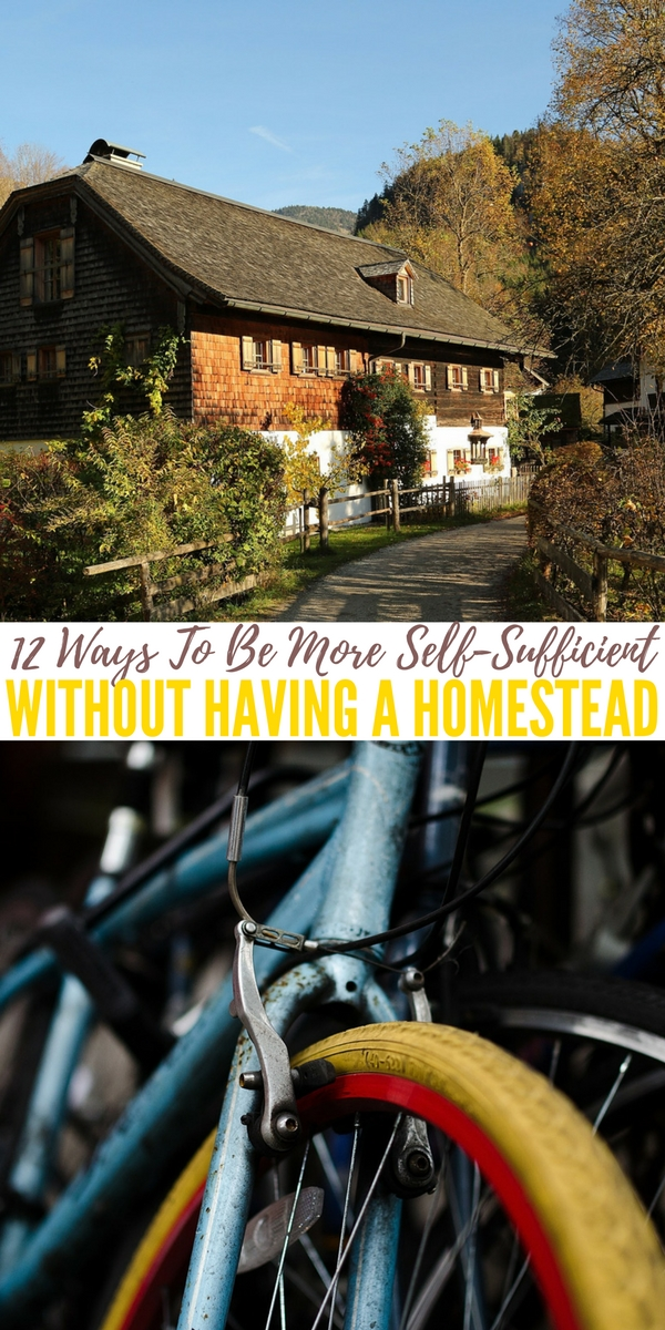 12 Ways To Be More Self-Sufficient Without Having a Homestead — There are many things you can do even on a small piece of land. It doesn't take 20 acres to be more self-sufficient. Most can be done with minimal effort and offer long term benefits. Start today.. I did it and now I am loving my life and the lifestyle.