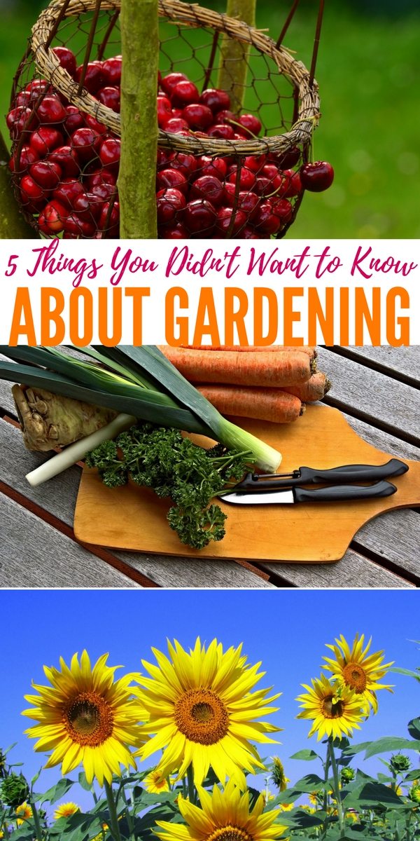 5 Things You Didn't Want to Know About Gardening — No one mentions the darker stuff about gardening. Gardening has been romanticized by the media so badly that the reality is lost in the message. Gardening is a lot of work that will cause you to sweat, bleed, want to rip your hair out, and just torch the whole thing.