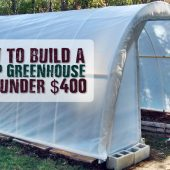 How to Build A Hoop Greenhouse For Under $400