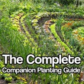 The Complete Companion Planting Guide
