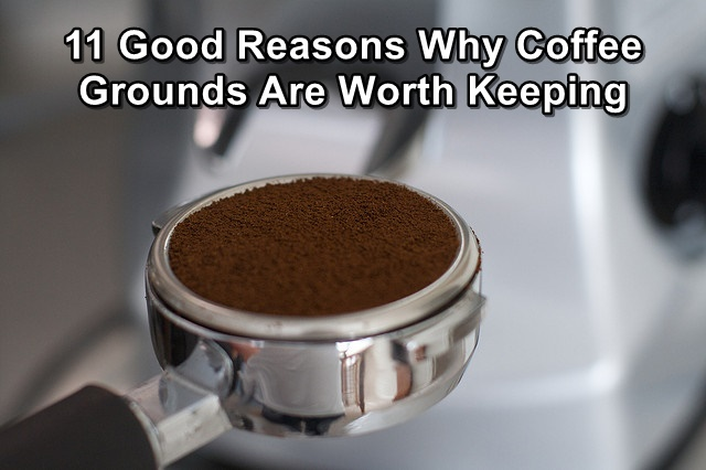 11 good reasons why coffee grounds are worth keeping - Are coffee grounds good for your garden ...