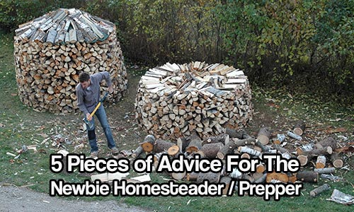 5 Pieces of Advice for the Newbie Homesteader/Prepper
