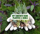 DIY Concrete Hand Planters & Bowls - I think this DIY project is just pure genius, I see these everywhere around where I live and wondered where the people bought them from. I looked high and low at the garden centers and Walmart's but never did see them for sale.
