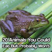 20 Animals You Could Eat But Probably Won't