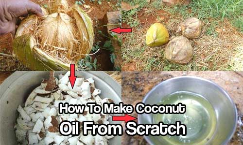 How To Make Coconut Oil From Scratch
