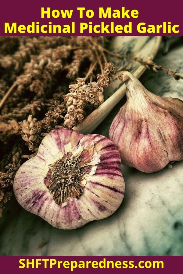 """According to Gladstar's book, """"Garlic is the herb of choice in treating colds, flu, sore throats and poor or sluggish digestion… makes a potent internal and external antiseptic, antibacterial, and antimicrobial agent effective for treating many types of infection."""""""
