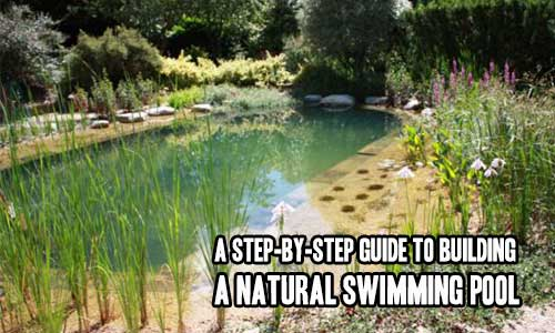 A Step By Step Guide To Building A Natural Swimming Pool Shtf Prepping Central