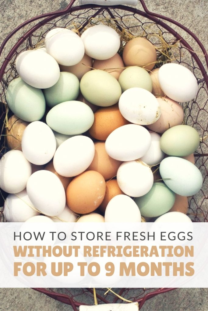 How To Store Fresh Eggs Without Refrigeration Up 9 Months - Store eggs without refrigeration like we did back in the day! Some say the eggs taste better when kept this way. Want to give it a try? I already do this and will never go back to refrigerating my eggs again!