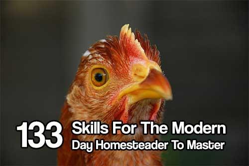 133 Skills For The Modern Day Homesteader To Master - There is something so empowering about learning how to do something new with your hands. Or mastering a skill that, at an earlier point in your lie, would have seemed completely foreign.