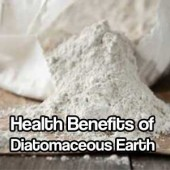Health Benefits of Diatomaceous Earth