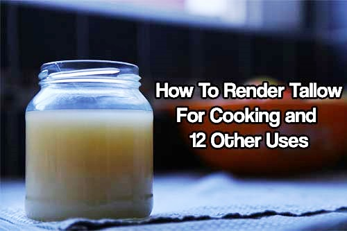 How To Render Tallow for Cooking and 12 Other Uses - When you render the fat of animals (beef, sheep, bear, deer, and poultry) this produces a harder fat called tallow, tallow has loads of preparedness uses that will sever you well before and after SHTF.