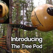 Introducing The Tree Pod