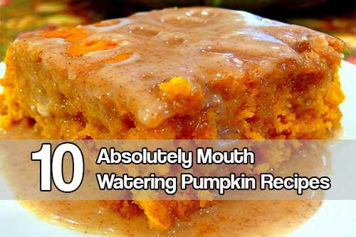10 Absolutely Mouth Watering Pumpkin Recipes