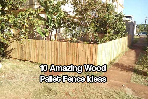 10 amazing wood pallet fence ideas shtf prepping for Wood pallet privacy walls