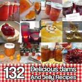132 Delicious Jams And Jelly Recipes - Check out this amazing collection of over 130 recipes for jam and jelly! There are combinations that will make your mouth water!