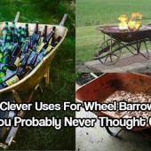9 Clever Uses For Wheel Barrows - Crazy to think that you could re-purpose an old wheelbarrow into something way more useful that just throwing it away.