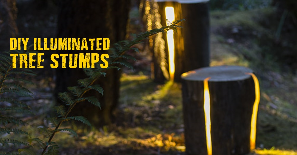 diy illuminated tree stumps shtf prepping homesteading