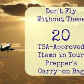 TSA-Approved Items in Your Prepper's Carry-on Bag