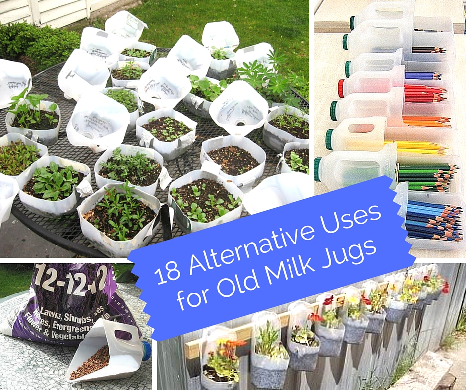 18 Alternative Uses for Old Milk Jugs - Everyday thousands of perfectly good plastic milk jugs get thrown into the trash. It's a shame because there are many practical uses for them. Milk jugs can be used as plant containers, mini-greenhouses, watering cans, fishing bobbers, and more. And if you know how, you can turn them into shovels, dust pans, and funnels.
